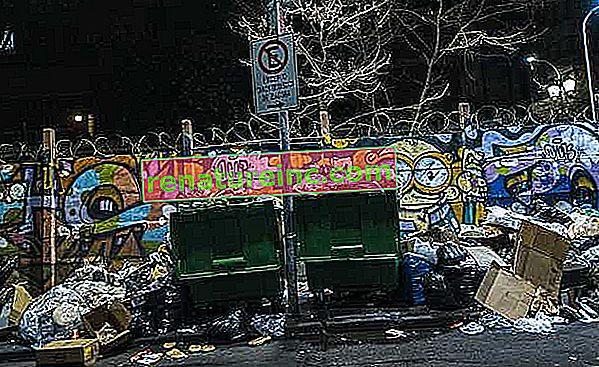 Les ordures: un problème grave dans le monde moderne