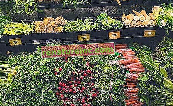 Comment conserver les légumes et autres aliments