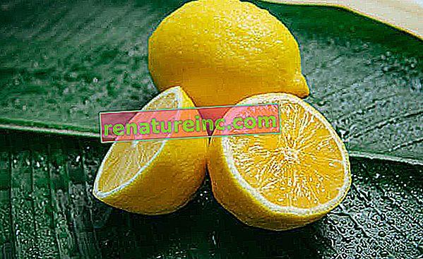 Remedio casero para la tos: siete recetas fáciles