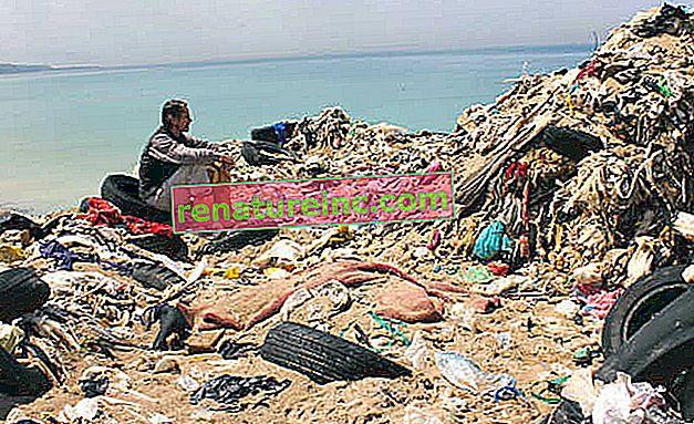 Documental muestra pérdidas causadas por falta de reciclaje