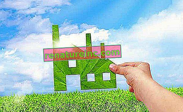 ¿Qué es la ecología industrial?