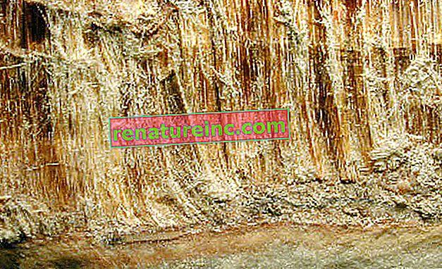 Hvordan bortskaffes asbestfliser?