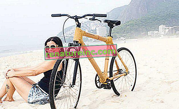 Bambucicleta: мотора от бамбук
