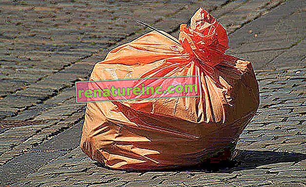Affaldsposer til selektiv indsamling: hvilke skal du bruge?