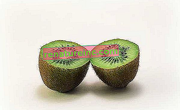 Avantages de délicieux kiwi
