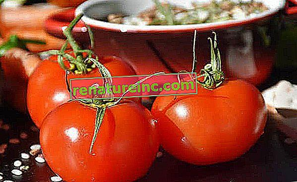 איך מכינים רוטב עגבניות ביתי עם חמישה סוגי מתכונים