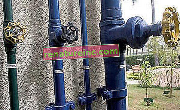 Przewodnik dotyczący oszczędzania wody dla mieszkań własnościowych: pomóż wynajmującemu uniknąć marnotrawstwa