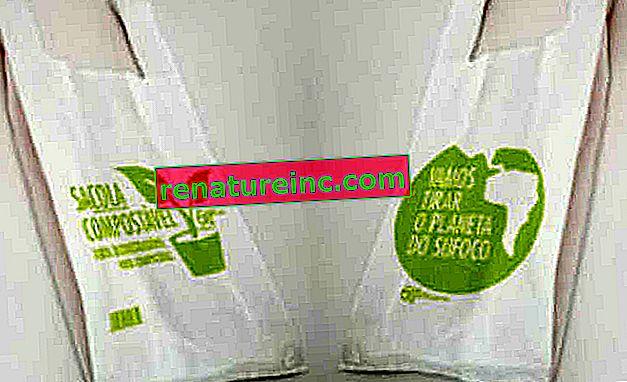 Hvordan kan man organisere affald og indkøb i hjemmet med forbud mod tasker?