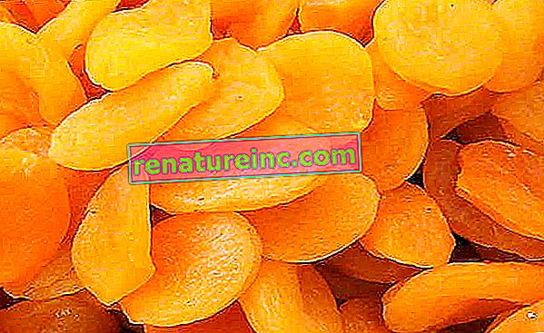Los beneficios del exfoliante natural de semillas de albaricoque