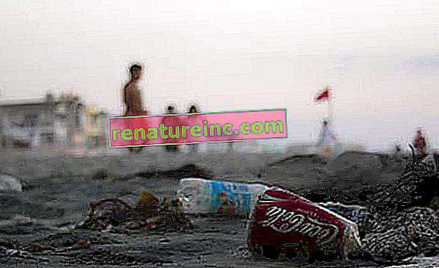 Rio rådhus vil bøtelegge de som kaster søppel på gaten. Verdien kan nå R $ 980