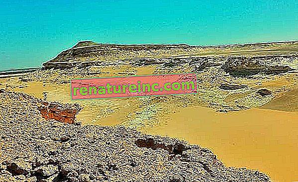 Saharski prah potuje in oplodi Amazonijo
