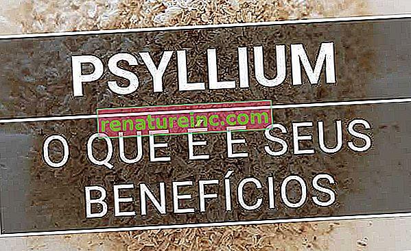 Psyllium: comprenda para qué sirve y utilícelo a su favor