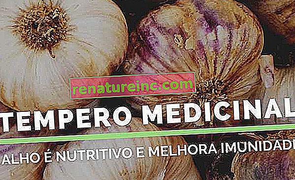 Diez beneficios para la salud del ajo