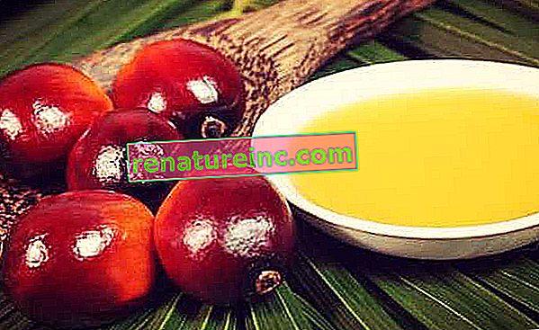 Olej palmowy, zwany także olejem palmowym, ma kilka zastosowań