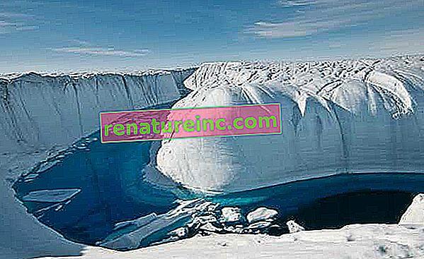 Topnienie lodowców Antarktydy potroi się i spowoduje wzrost poziomu morza