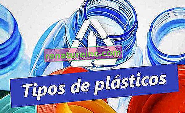 Conoce los tipos de plásticos