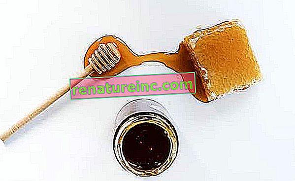 Descubra los beneficios de la miel