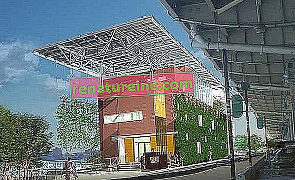Bâtiments à consommation énergétique nette zéro: les bâtiments durables