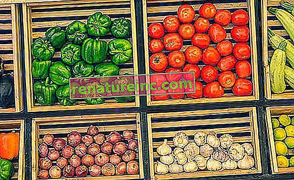 Как да запазим плодовете и другите храни
