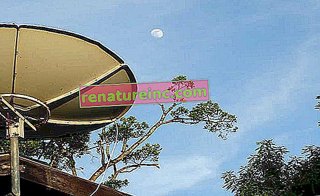 Que faire de l'antenne parabolique?