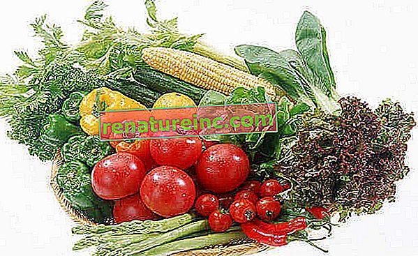 Tečaj ekološke zelenjave št. 10: vemo, kdaj in kako nabirati ter kaj storiti, da imamo vedno svežo zelenjavo