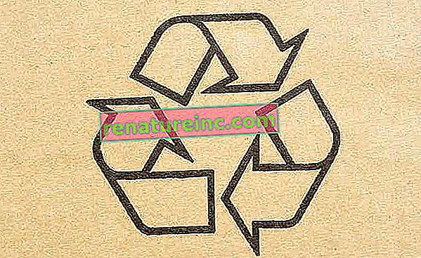Рециклиране: какво е и защо има значение
