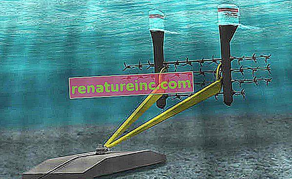 Ny teknologi til kraftproduktion gennem havstrømme testes i Canada