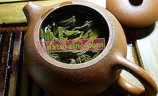 Té verde: beneficios y para que sirve