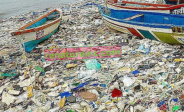 Rapporten viser resultater i å forhindre forurensning av plast