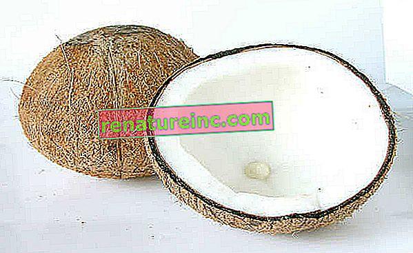 Comment utiliser l'huile de coco: trois utilités peu connues