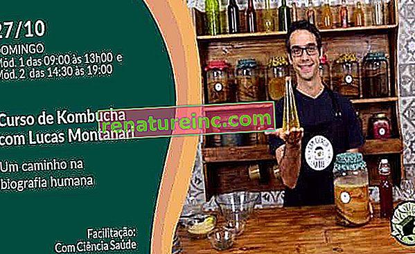 Tečaj v Sao Paulu uči, kako narediti ročno izdelano in komercialno kombučo