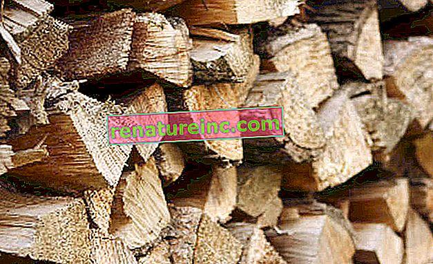 Може ли някакъв вид дървесина да се използва повторно?