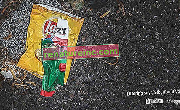 """Рекламната кампания в Торонто използва """"боклук срещу боклук"""""""