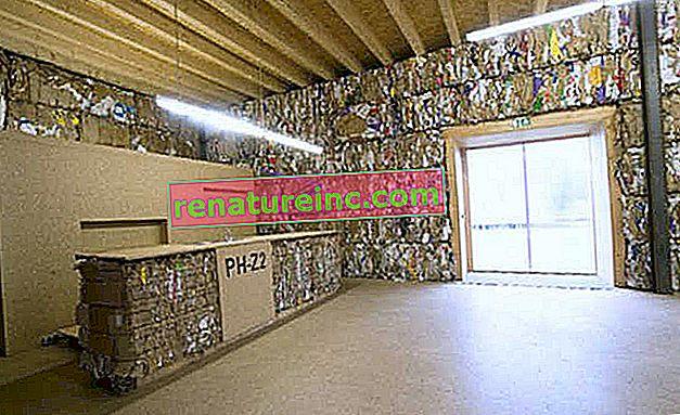 Hus fremstillet af genbrugspapir åbner i Tyskland