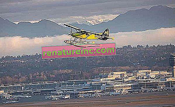 Verdens største helelektriske fly foretager sin første flyvning