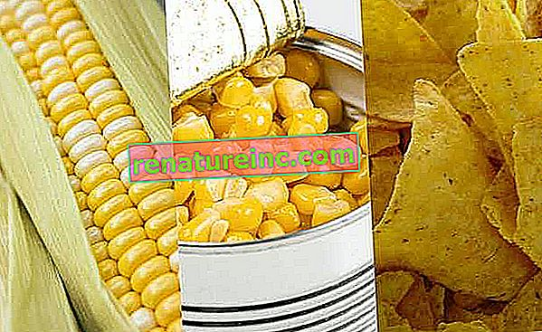 Какво представляват пресните, преработени и ултрапреработени храни