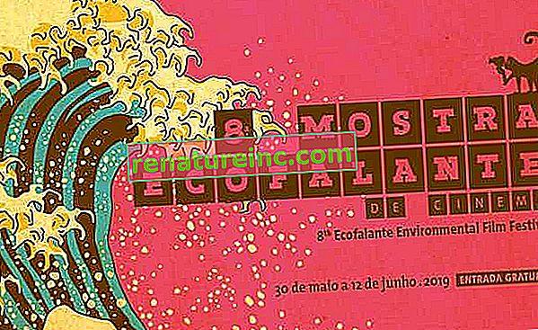 8. izložba ekoloških zvučnika u ekološkom kinu započinje u svibnju u Sao Paulu