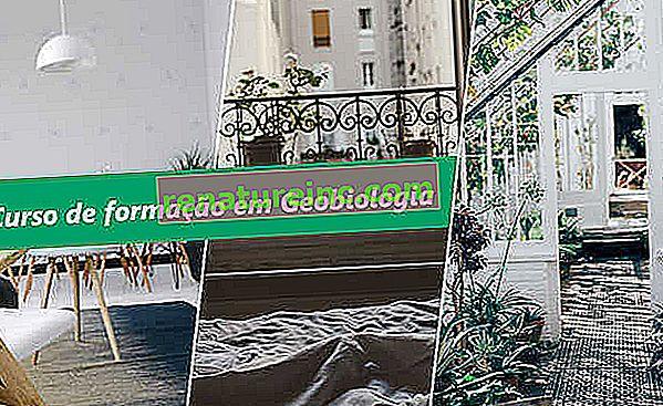 Geobiologikursus underviser i anvendelsen af konceptet i forskellige situationer. Få det!