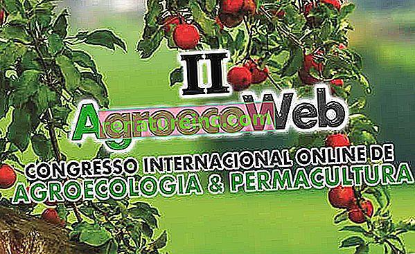 Вторият международен онлайн конгрес по агроекология и пермакултура започва през октомври