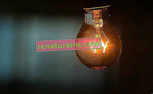 La vente de lampes à incandescence est officiellement interdite au Brésil