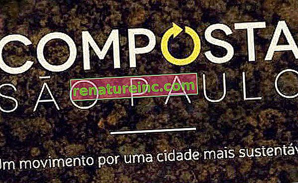 Le projet «Composta São Paulo» vise à construire une politique publique pour encourager l'utilisation de composteurs dans la ville