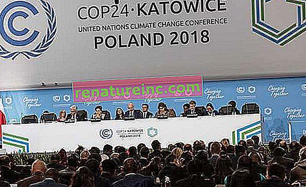 COP24: land definerer regler for gjennomføring av Paris-avtalen
