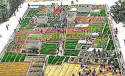 Бившата фабрика се превръща в градина в Китай