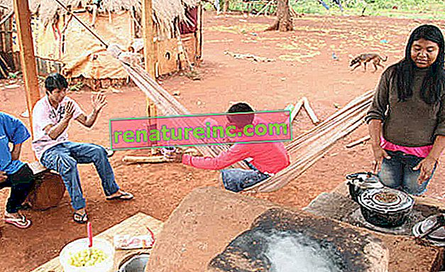 Екологичната печка се използва като алтернатива за индианците Гуарани-Кайова