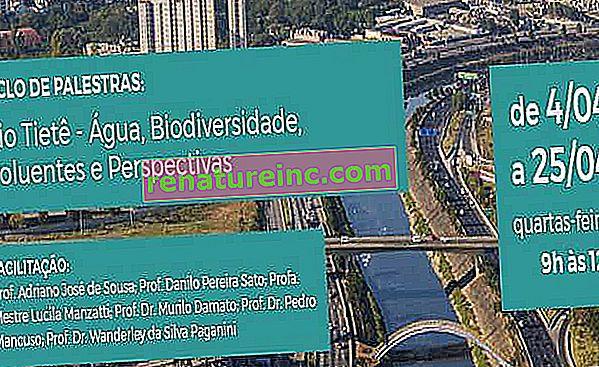Лекционен цикъл: Rio Tietê - Вода, биологично разнообразие, замърсители и перспективи