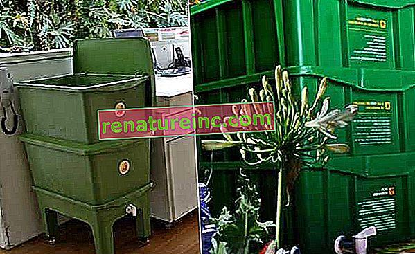 Домашно компостиране: как да го направите и ползи
