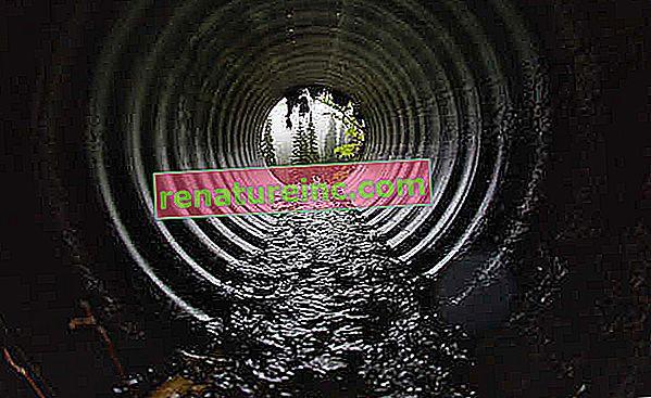 Замърсяването на водите: видове, причини и последици