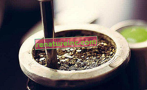 Fordelene ved yerba mate
