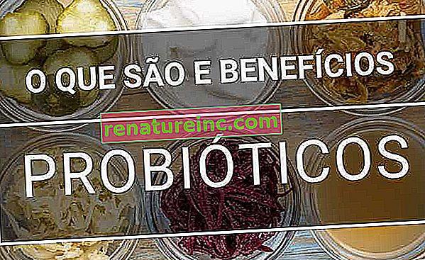 Kaj so probiotična živila?