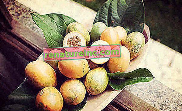 La graine de fruit de la passion est bonne pour la santé